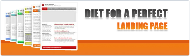 Diet for a Perfect Landing Page by a Web Design Company