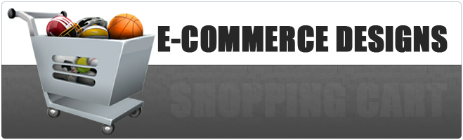 Top e-commerce designs for your site by the Best Web Design Company