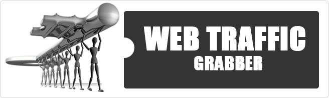Web Traffic Grabber with simple directions!